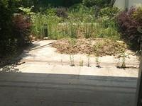 稀缺绿城排屋大花园全新毛坯户型位置带二个车位满二年有钥匙