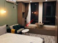 信业ICC单身公寓,精装,一室一卫,朝南,位置好,租金高