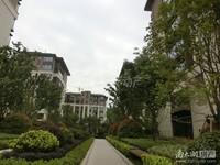 19944出售大家仁皇乐山全新精装修3室2厅