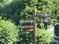 19912太湖边联排东边套 大院子