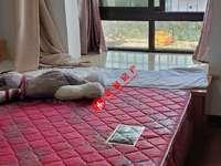 清河嘉园B区,精装,两室一厅,家具家电齐全可拎包入住