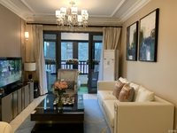 西南黄金住宅 付一成 二环内 全高端设备 豪华智能精装修 进口顶级家具 对口名校