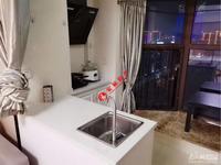 金色水岸21F 精装修一室一厨卫一阳台