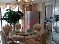 巴黎春天17楼 精装修 三室两 厅明厨两明卫 满五年有个