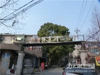 3262#吉山二村1楼45平一室一厅一厨一卫精装家具家电1000看房方便
