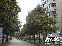 出租凤凰一村2室1厅1卫58.9平米1600元/月老装修住宅