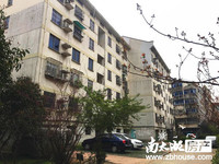 南园小区单身公寓5楼/共6楼 40平 较好装修 拎包入住 每月1000元