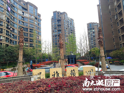 风雅蘋洲 5室2厅 毛坯 11楼顶跃 南北露台 空中花园 景观房 满2年