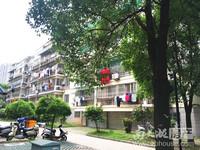 急售!紫云花园4楼,131.6平方,车库17.7平方,良好装修,三室两厅二卫