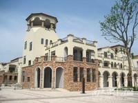 出售天玺独栋别墅,产证面积525平,带超200平大花园,