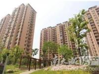 便宜出租:金田家园,电梯房,两室两厅