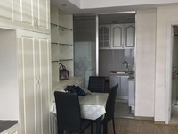 出租 巴黎春天单身公寓 一室一卫带厨房 精装修 家电齐全 拎包入住 朝东南