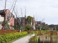 诺德上湖城全新别墅满二年位置好双汽位