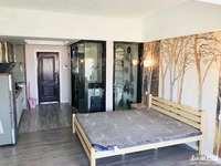 奥园壹号单身公寓便宜出租 45平 设施齐全 1600元