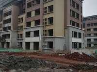六层洋房一楼带花园健康城桃源居2室1厅1卫82.78平米101万住宅