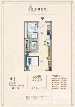 佳源中心 精品公寓 带阳台 单价低 自带大型商业综合体 配套齐全 繁华