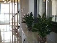 最新出售:骏名国际 25 32楼 产权面积88平方实际可用140平方