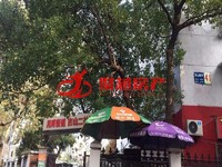 吉山新村 简装 面积31平 价格27.9万