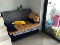 星汇半岛9楼,单身公寓,精装,拎包入住,价格美丽