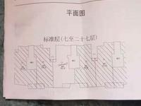 碧桂园翡翠湾144平172万精装修四房朝南 南北通透 无遮挡新房子没有住过