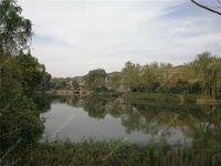 阳光假日 花园200方双拼别墅