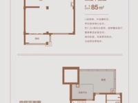 环湖好叠屋,上叠130平带25平大露台,20平阁楼,单价一万五左右,客厅挑高6米
