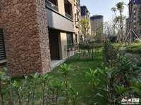 洋房一楼带花园鑫远 太湖健康城 桃源居2室2厅1卫111万住宅万住宅