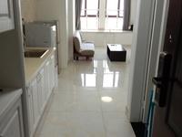 翰林世家,精装loft单身公寓,二室二厅二卫