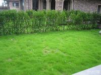 西西那堤独栋别墅,381方,5室3厅5卫,花园250方,满两年,带车库,540万