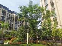 华丰二期1楼60平2室半良好装修85.8万周边设施齐全价格实惠