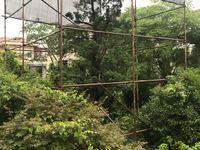 南太湖新区真实房源发布:太湖阳光假日兰怡居独栋,产证面积660.34方超大花园