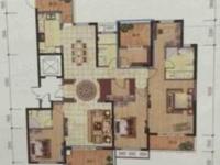 东部新区真实房源发布:东郡红树湾208平五室两厅三卫大平层 四开间朝南 满两年