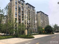 出售太湖天地洋房,3室2厅2卫,黄金楼层,全新毛坯,双学区