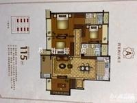 出售美岸华府,4室2厅2卫,全新毛坯,双学区