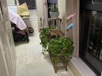 出售:星汇半岛二期10楼,不靠路,婚装,拎包入住,价可协