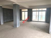 春江名城8楼 毛坯 三室两厅明厨卫 满五年有个