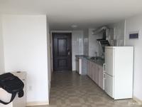 翰林世家6楼LOFT单身公寓待租,刚腾出来,精装,随时看房