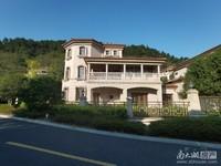 中奥美泉宫,独栋别墅,产权426平,花园300平,1100万