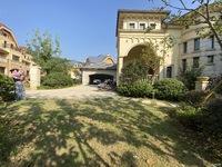 中奥美泉宫,独栋别墅,楼王位置,产权743平,花园920平,2800万。