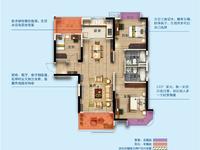 碧桂园 首付20多万 3房 户型好 楼层好 满两年