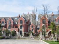 诺德上湖城排屋1-3楼 344平米 双车位 带花园100多平米 450万