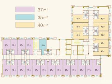 楼层户型分布图
