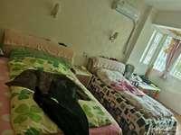 出售海锦花园2楼4室2厅2卫163.55平米175万住宅