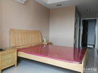 巴黎春天单身公寓 15楼 30.09平 精装朝南 41.5万 满2年 价可协