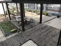 米兰商务楼二层送超大露台100平方