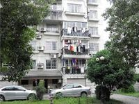 碧潮苑,3楼,3房一口价急卖